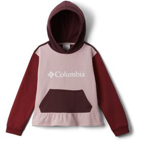Columbia Columbia Park Hoodie Meisjes, roze/rood
